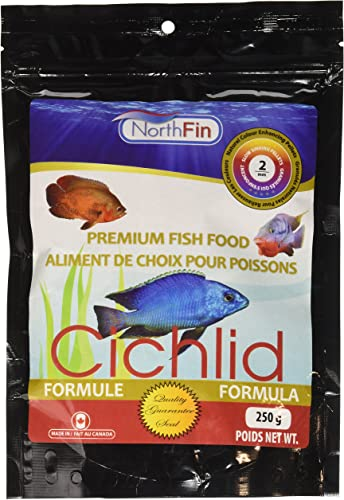 Northfin-Cichlid-Food