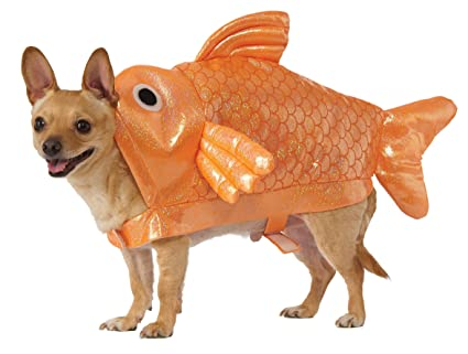 3bb163ea61d Amazon.com : Rubie's Gold Fish Dog Costume, M : Pet Supplies