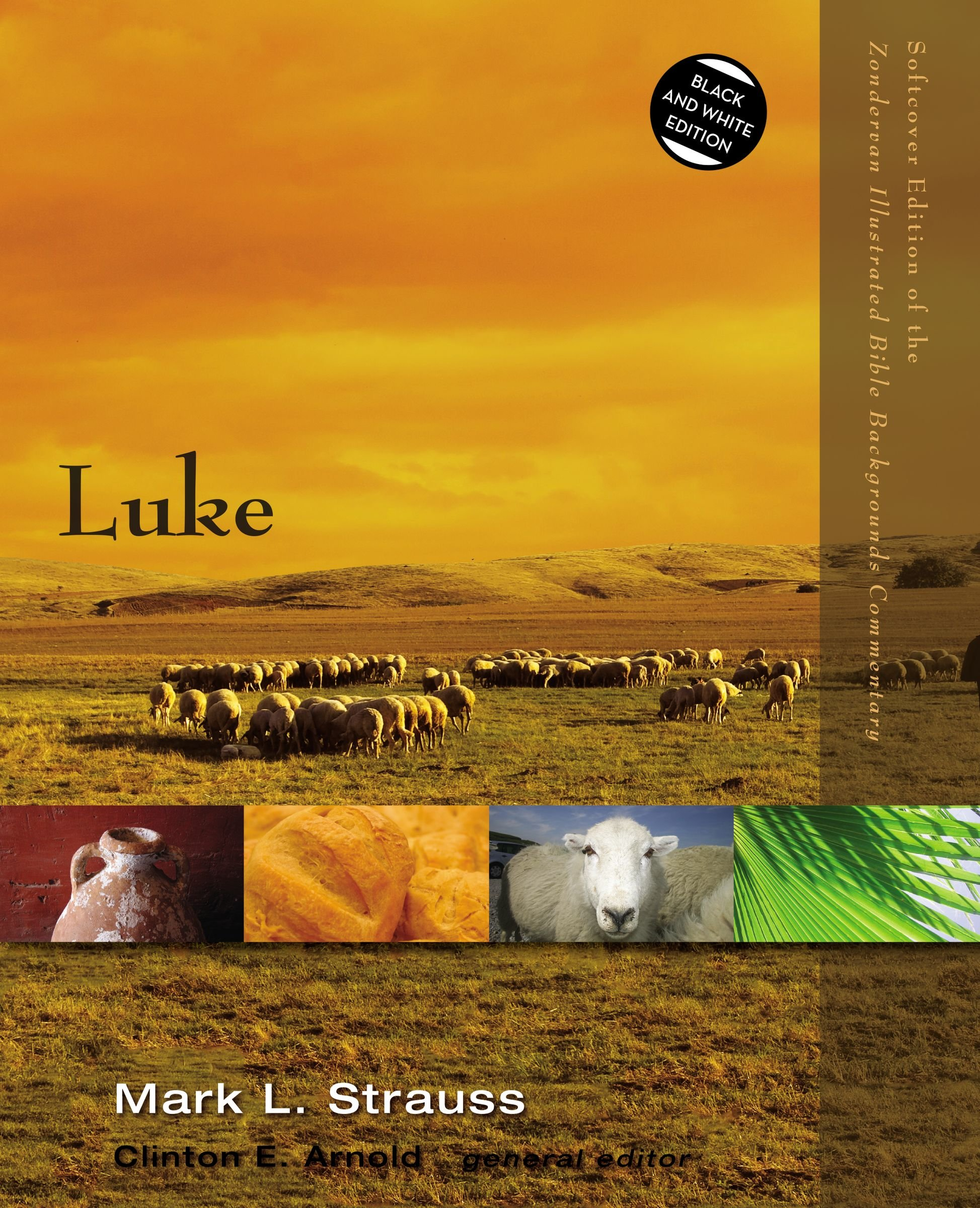 Luke (Zondervan Illustrated Bible Backgrounds Commentary) PDF