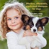 Veterinary Formula Clinical Care Oatmeal and Tea