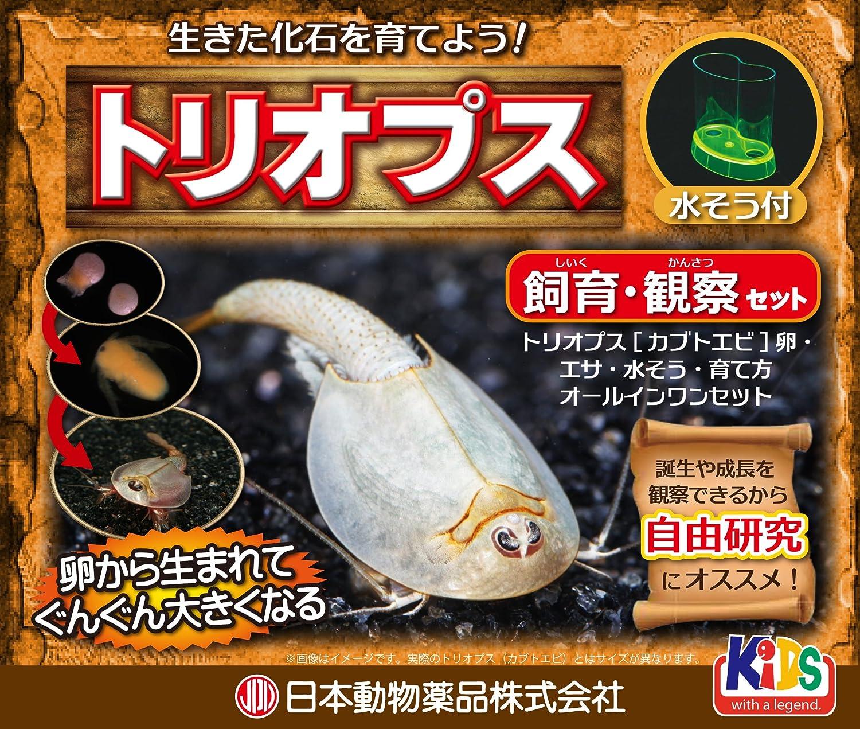 ニチドウ トリオプス(カブトエビ)飼育観察セット