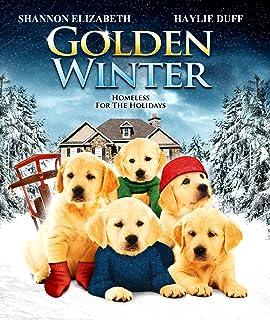 golden winter blu ray - A Golden Christmas 2