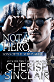 Not a Hero (Sons of the Survivalist Book 1)