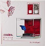 Marina Betta Fish Starter Aquarium Kit Wind Theme, Large