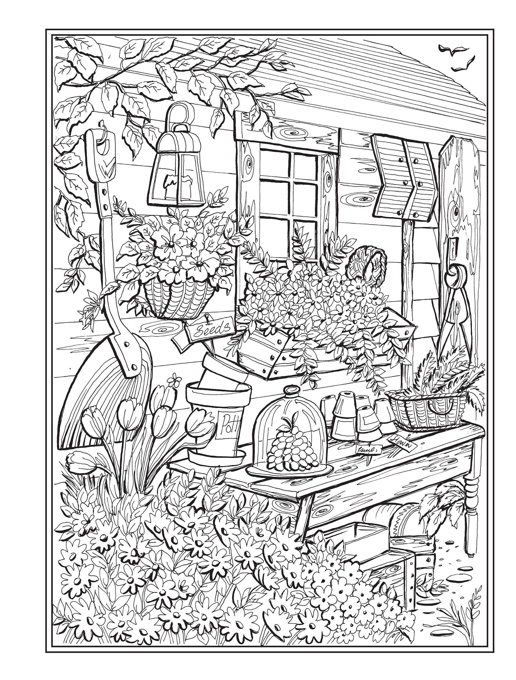 Amazon Com Creative Haven Country Charm Coloring Book Creative
