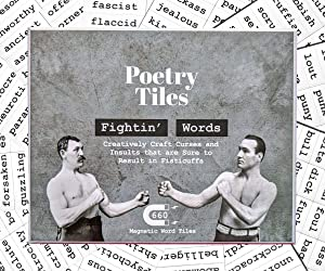 Poetry Tiles - 536 Fightin' Words Word Magnets - Obscenities, Insults, and Swear Words Themed Kit for Refrigerator Poems and Stories