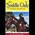 Saddle Club 65: Silver Stirrups (Saddle Club series)