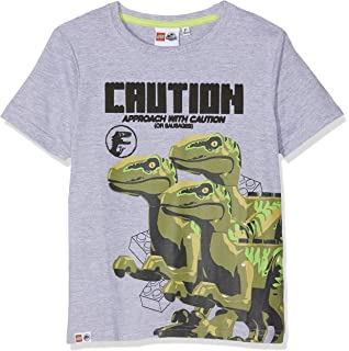LEGO Camiseta para Niños: Amazon.es: Ropa y accesorios