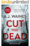 Cut You Dead: a tense psychological thriller that will keep you guessing