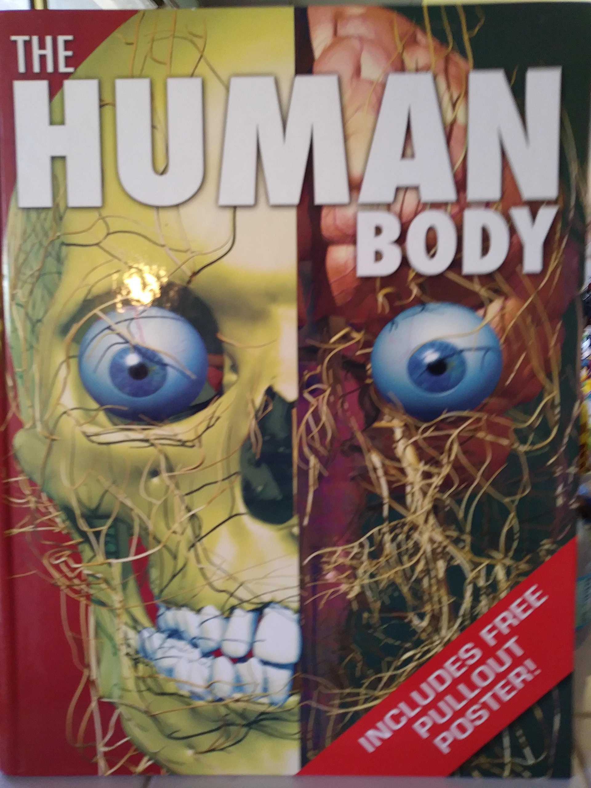Download THE HUMAN BODY pdf epub