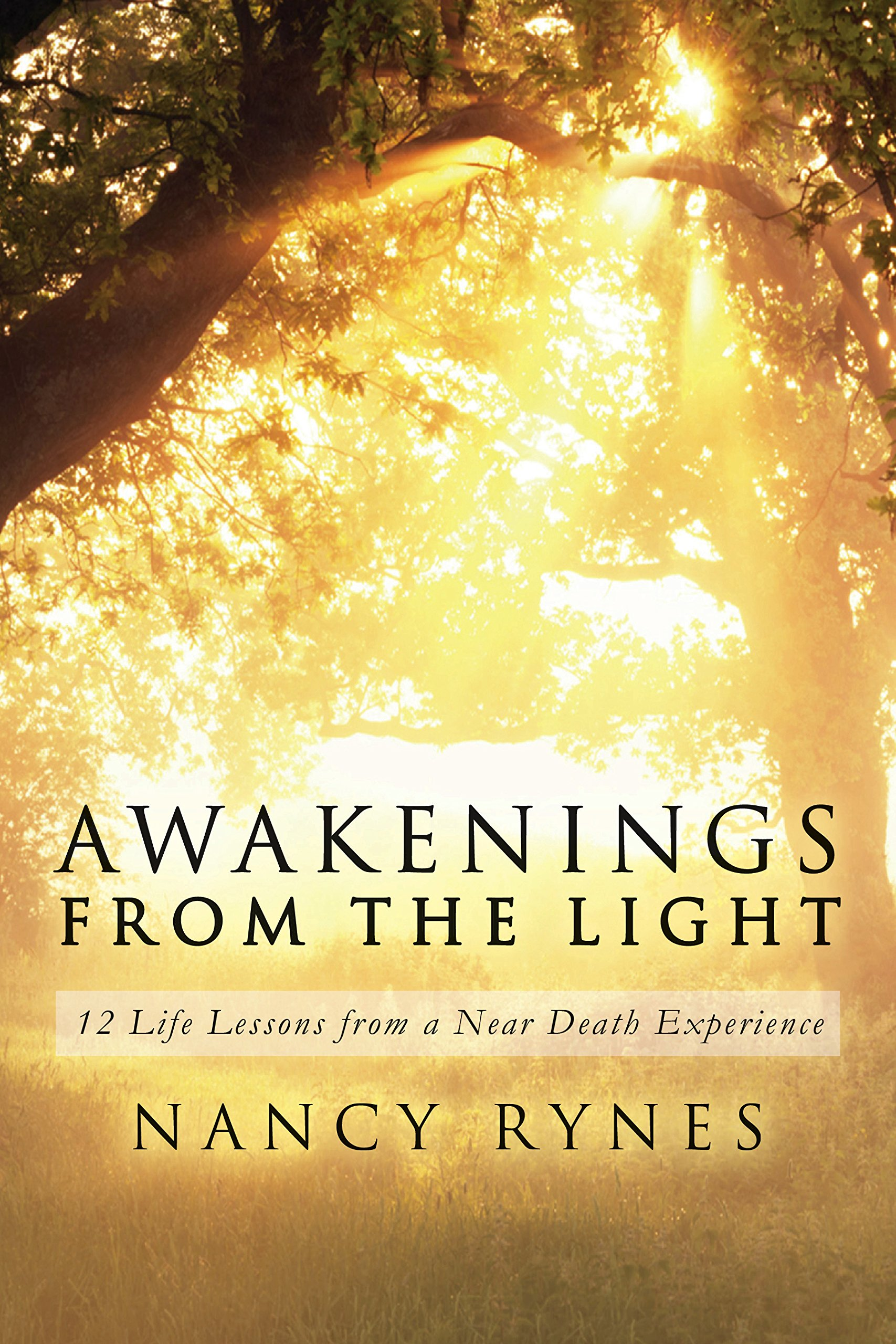 Awakenings From The Light  12 Life Lessons From A Near Death Experience  English Edition