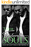 Their Fractured Souls : Sons of Lost Souls MC - Book Six