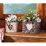 """Vaso per piante """"cuore di betulla"""", set da 2 pezzi"""