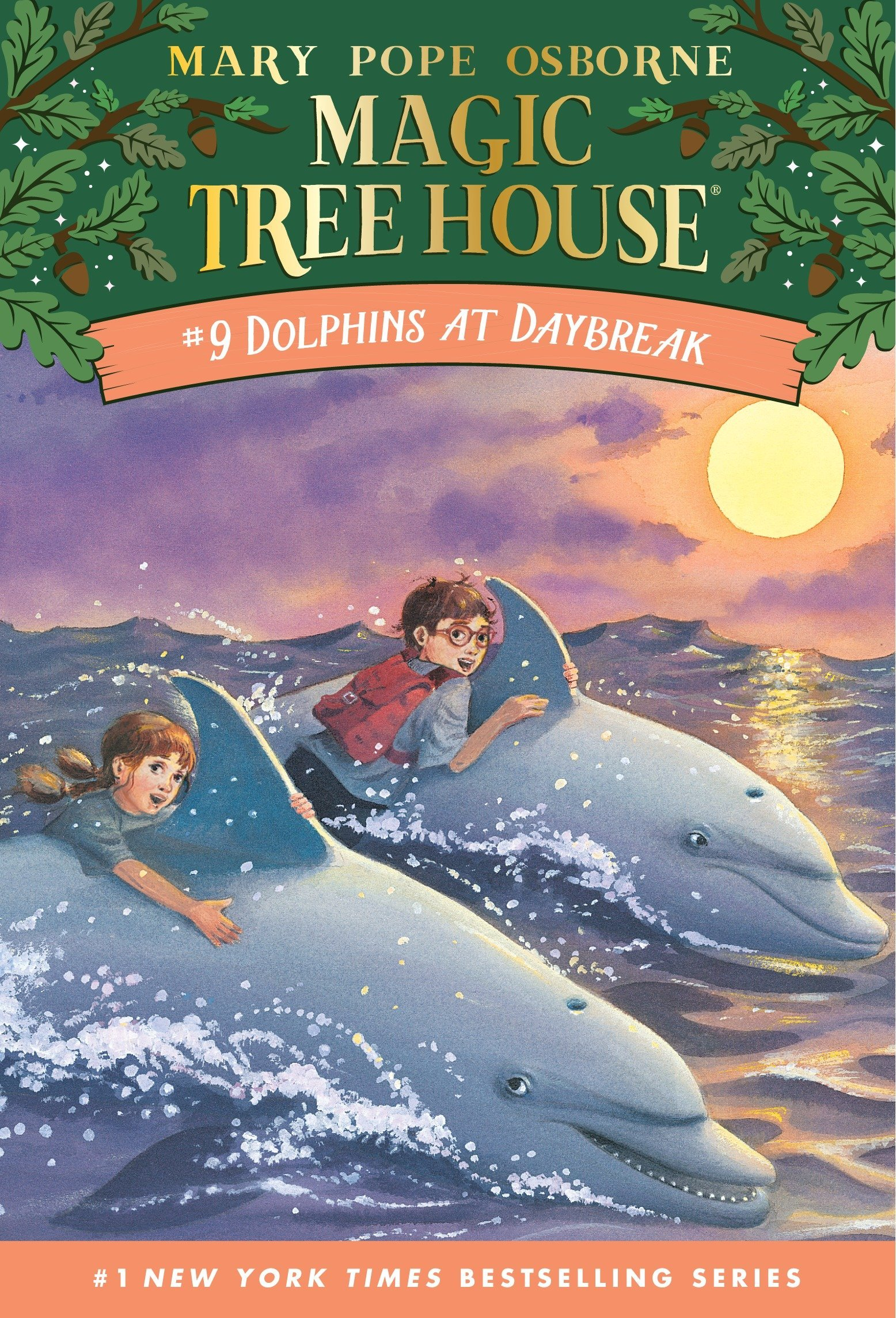 Dolphins Daybreak Magic Tree House