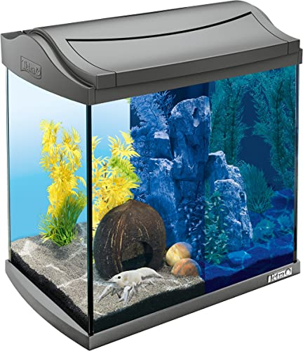 Tetra-AquaArt-Discovery-Line-LED-Aquarium