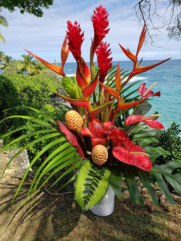 Amazon Com Extra Large Tropical Surprise Fresh Flower