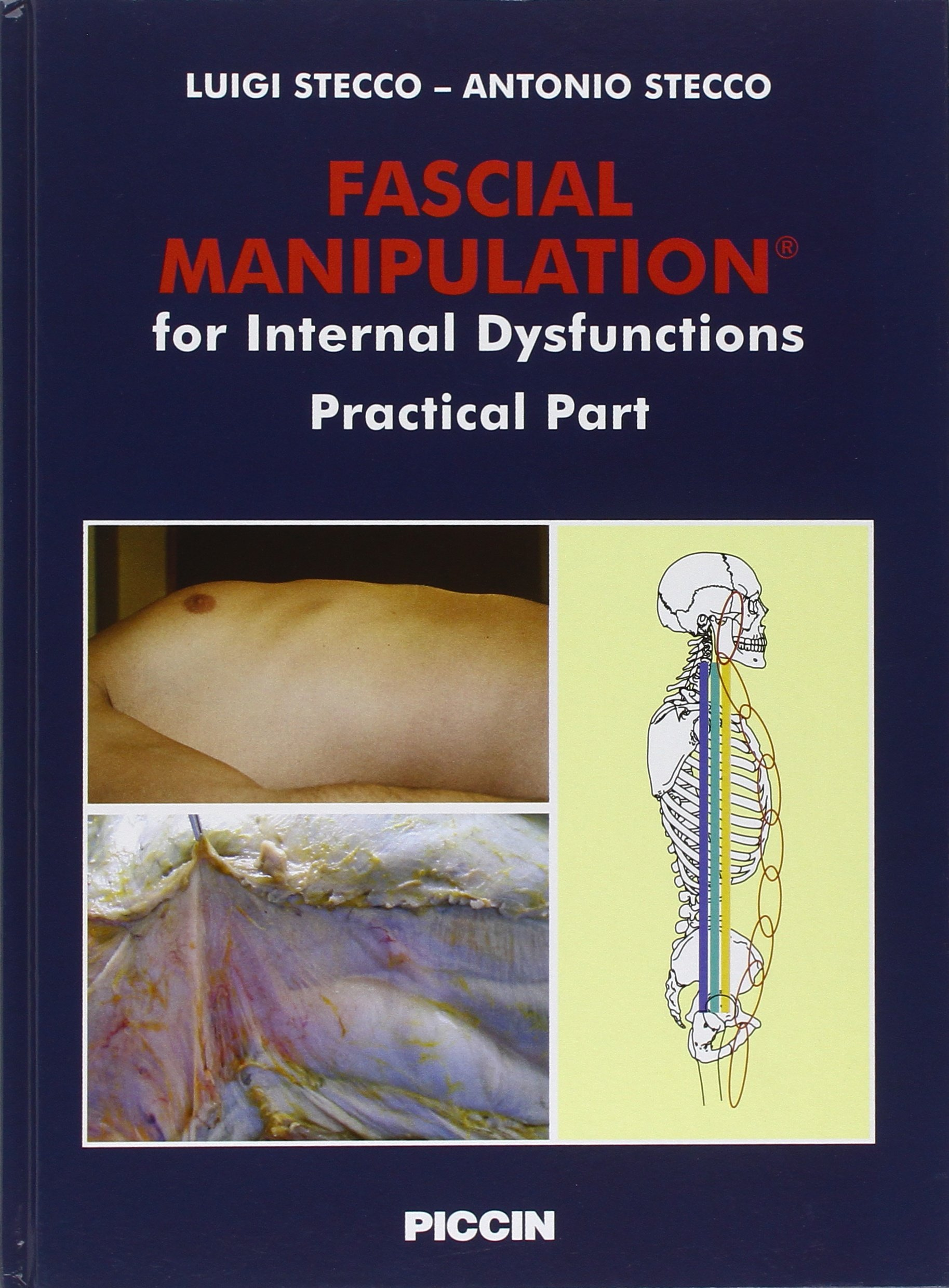 Fascial Manipulation For Internal Dysfunctions Practical Part