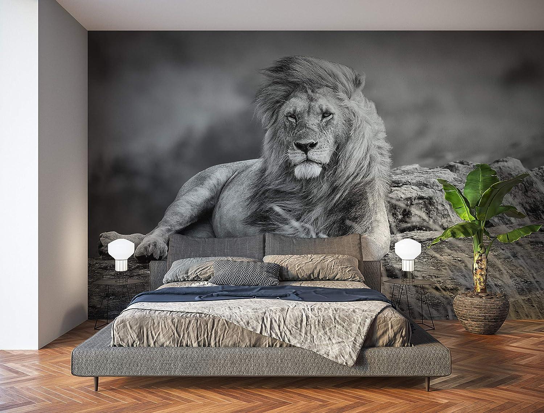 Oedim Fotomural Vinilo para Pared León Blanco y Negro | Mural | Fotomural Vinilo Decorativo | 200 x 150 cm | Decoración comedores, Salones, Habitaciones