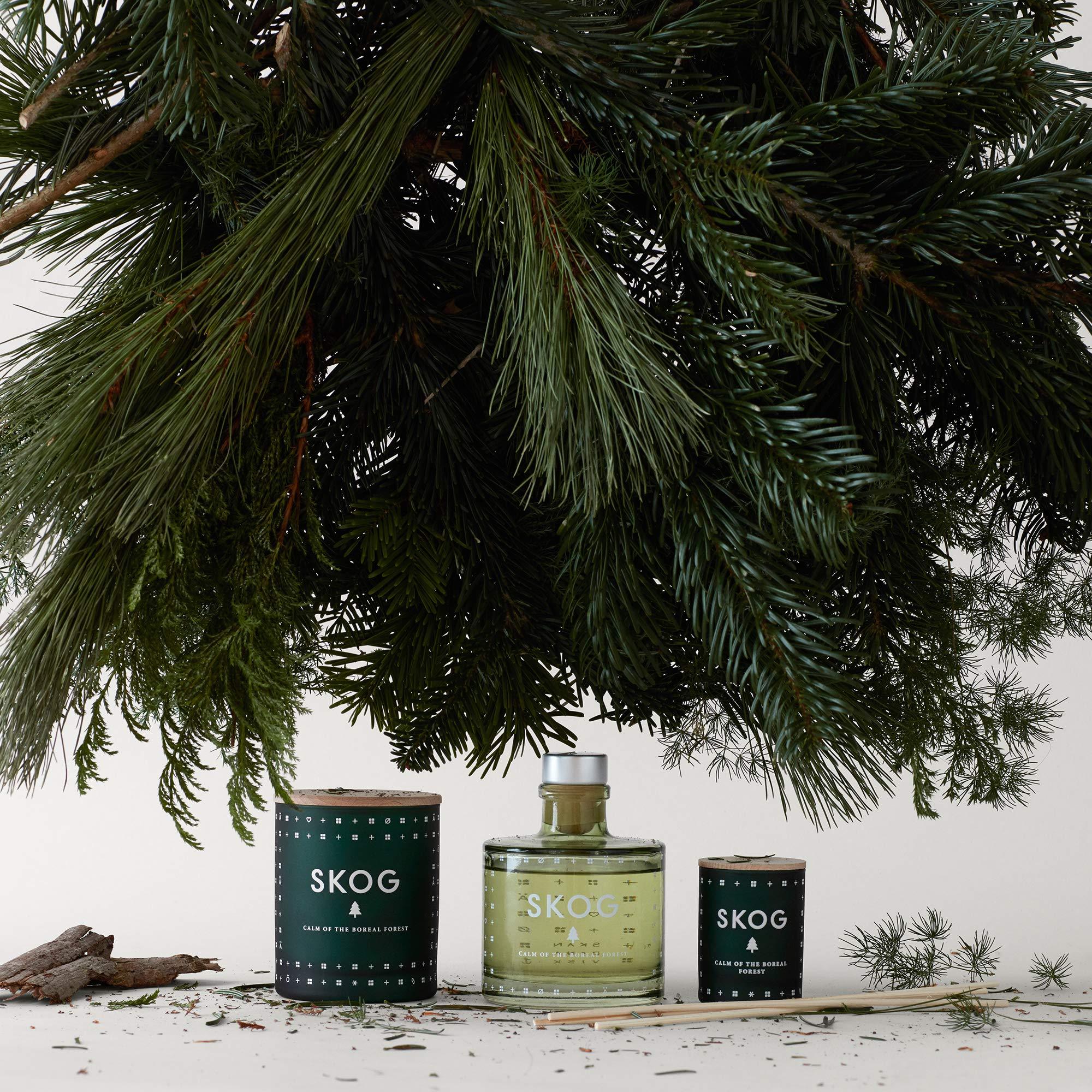SKANDINAVISK Skog (Forest) Scent Diffuser 6.75 Fl Oz by SKAN D · NA VISK (Image #3)