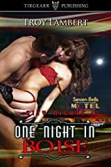 One Night in Boise: City Nights Series: #1