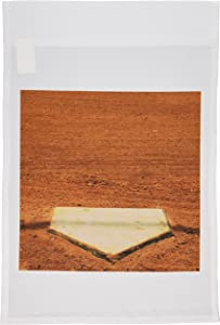 3dRose fl_50211_1 Home Plate in Baseball Garden Flag, 12 by 18-Inch