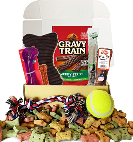 Dog Gift Box Basket