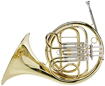 Amazon.com: Roy Benson RBHR302 Advanced French Horn: Musical ...
