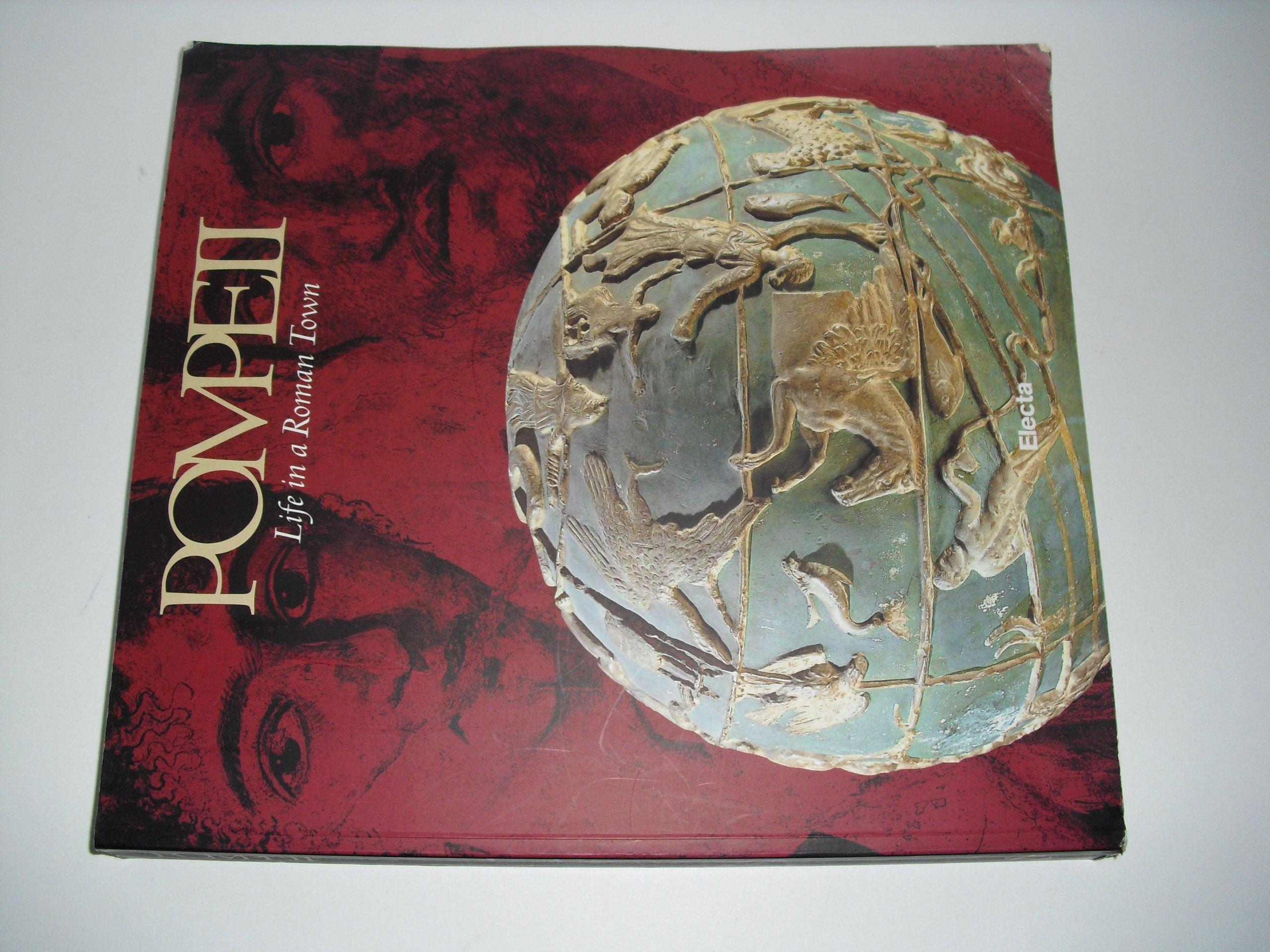 Download Pompeii-Life in a Roman Town pdf