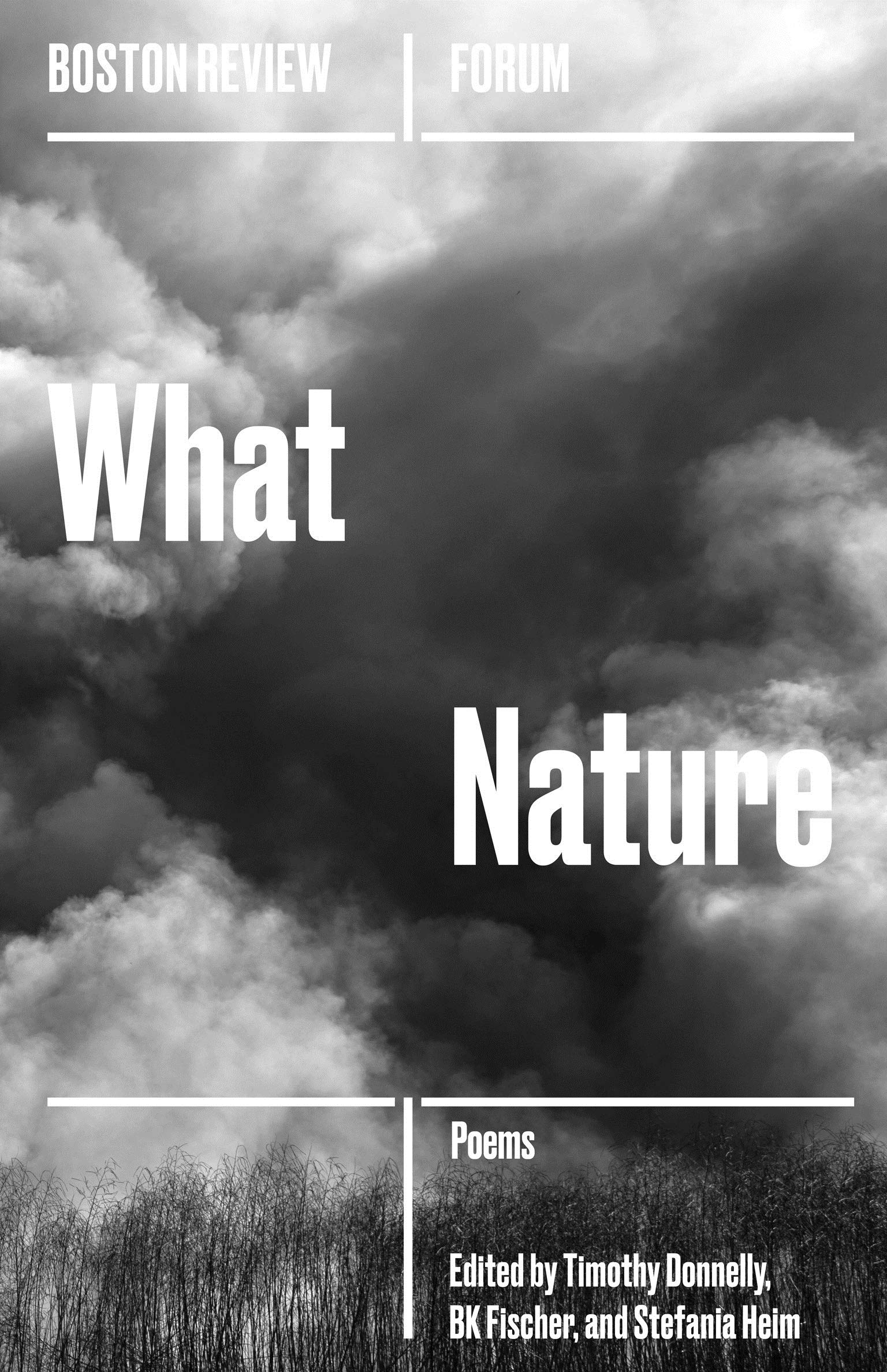 What Nature (Boston Review / Forum): Donnelly, Timothy, Fischer, B. K.,  Heim, Stefania: 9781946511058: Amazon.com: Books