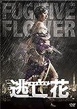 【Amazon.co.jp限定】逃亡花 DVD-BOX (複製サイン入り特製ブロマイドセット付)