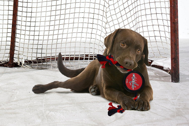 10aafbc83 NHL Unisex NHL Calgary Flames Athletic Mesh Dog Jersey All Star Dogs Inc  MESH-CALGARY-P
