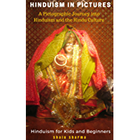 HINDUISM IN PICTURES: A Pictographic Journey into Hinduism and the Hindu Culture: Hinduism for Kids and Beginners (English Edition)