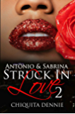 Antonio and Sabrina Struck In Love 2: Volume 2 (Antonio and Sabrina: Struck In Love Book)