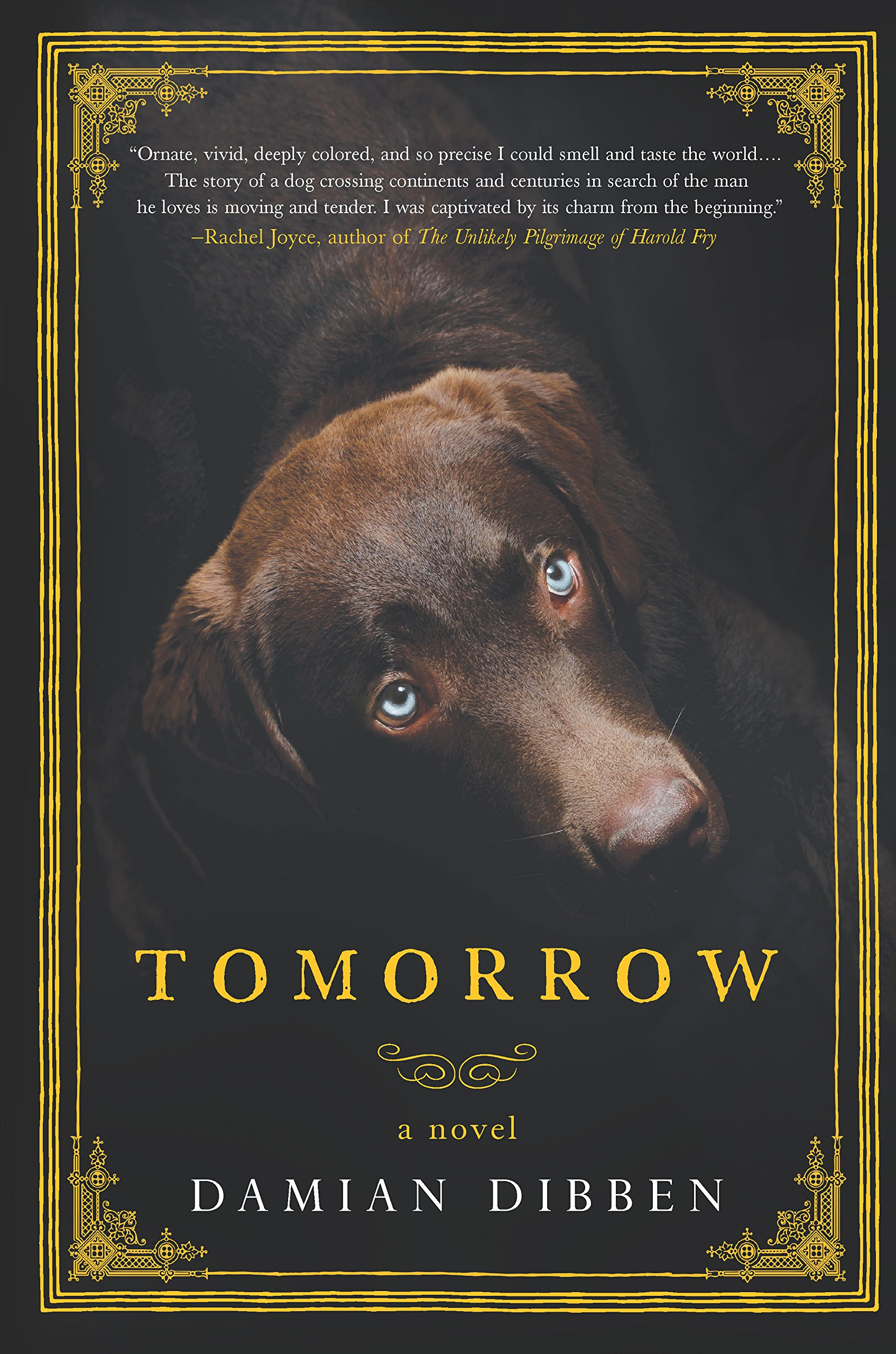 Tomorrow: A Novel