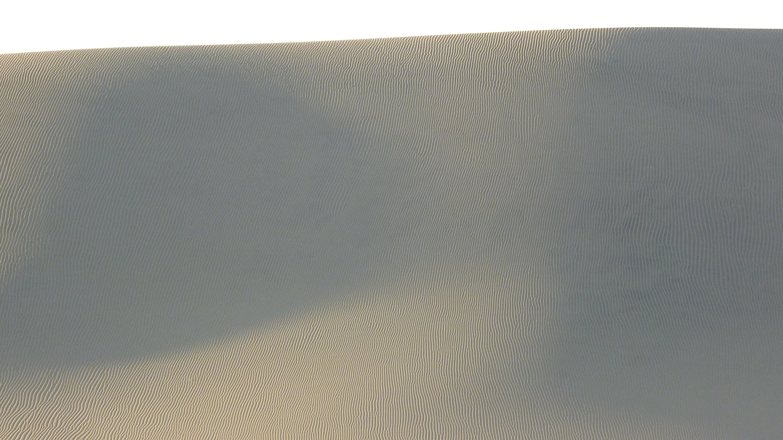 Sand Dune by