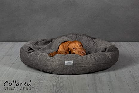 Collared Creatures Comfort Cocoon - Cama para perro 900 mm, color gris