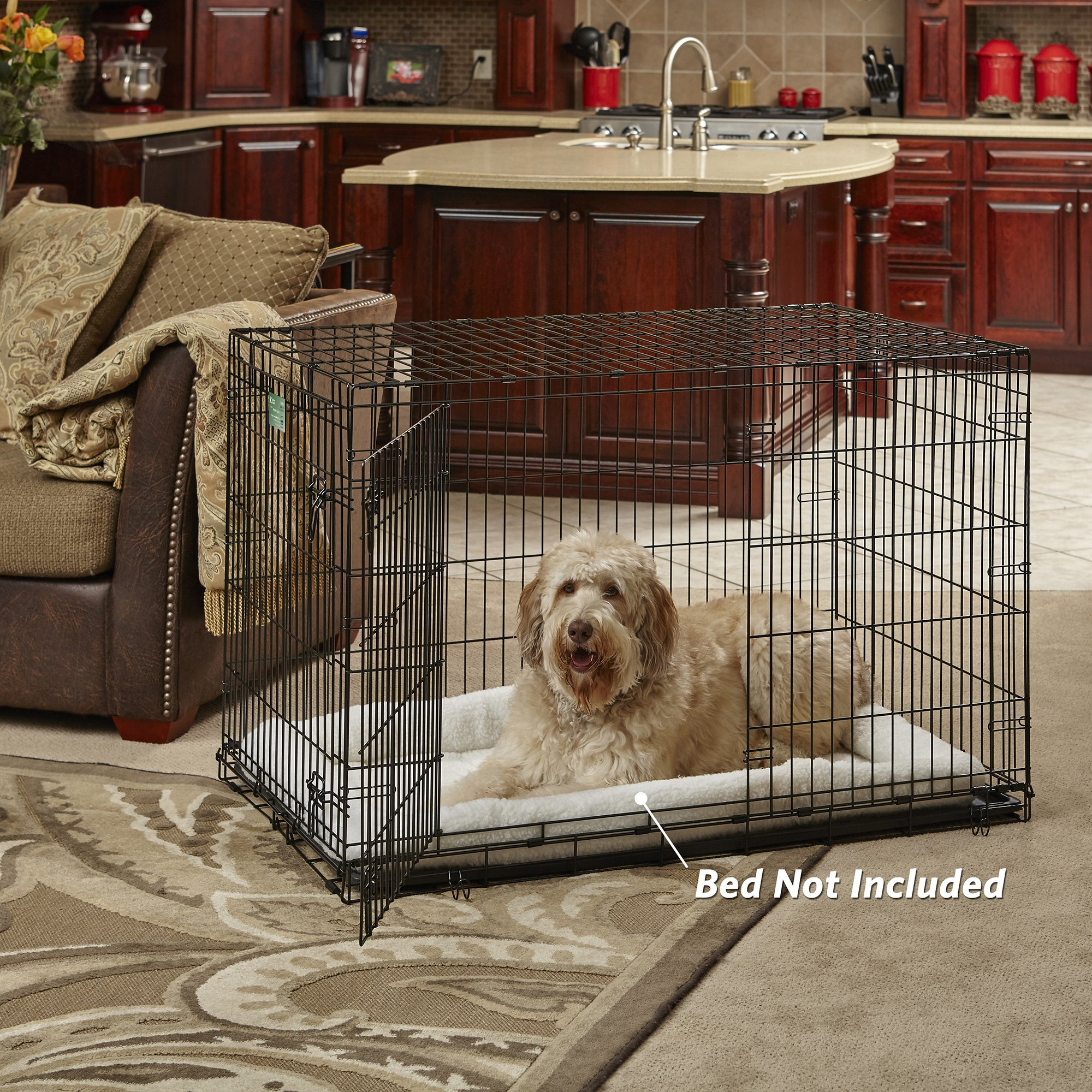 XL Dog Crate | MidWest iCrate Double Door Folding Metal Dog Crate w/ Divider Panel, Floor Protecting Feet & Leak-Proof Dog Tray | 48L x 30W x 33H Inches, XL Dog Breed, Black by MidWest Homes for Pets (Image #2)