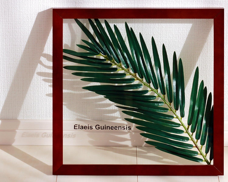 リーフパネル Forest Deco Elaeis Guineensis(ギニアアブラヤシ)/ 絵画 壁掛け のあゆわら B00C2S2QRI