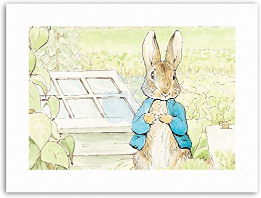 HELEN BEATRIX POTTER PETER RABBIT RADISHES Poster Picture Canvas art Prints