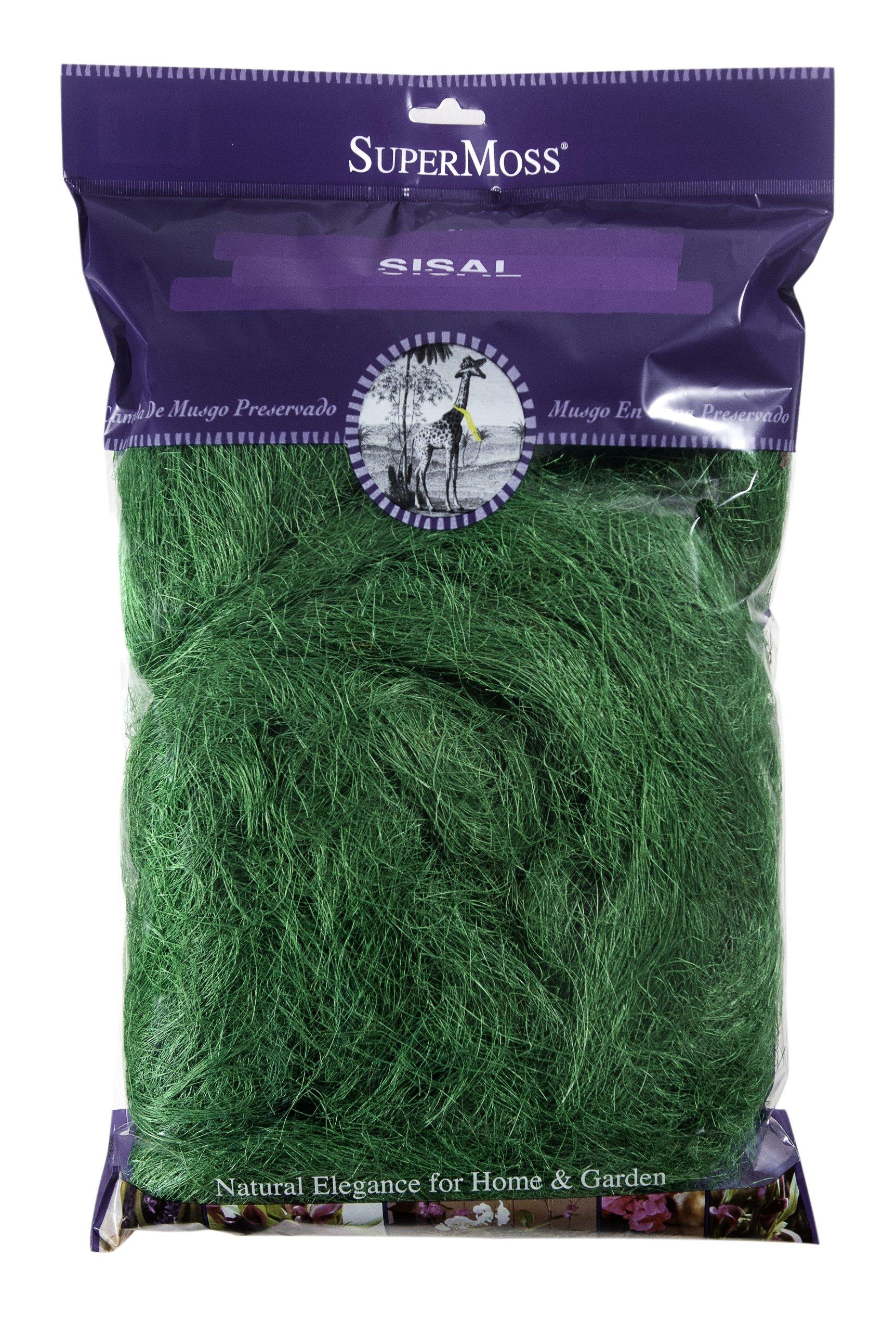 Super Moss (29917) Sisal, Forest, 8oz