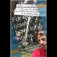 Far away cows have long horns: Ferrara to Cardiff bike ride, July 2017
