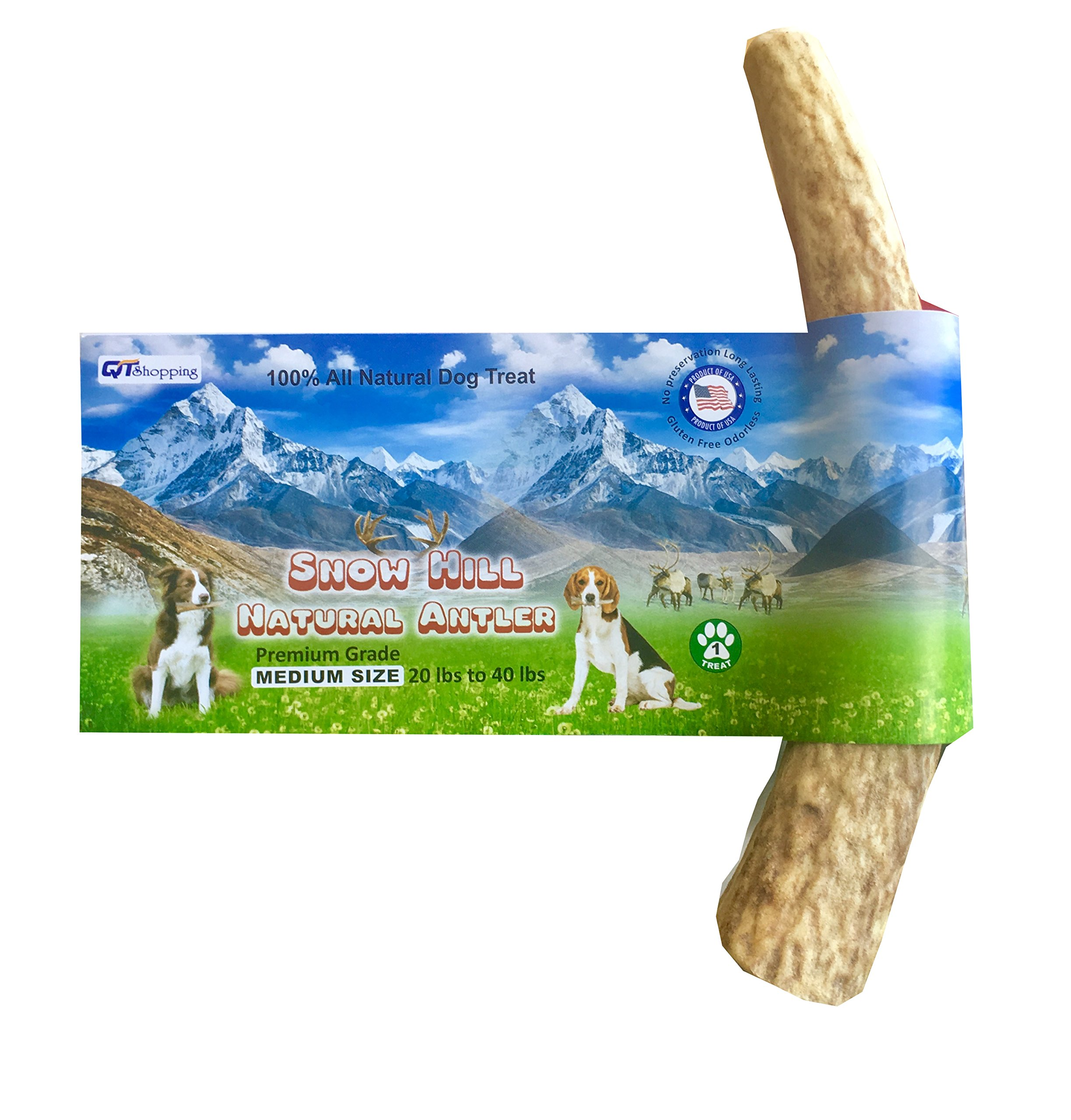 """American Antler Dog Chews Snow Hill Himalayan Elk Horn Medium Size 5""""-5.5"""" For Dog Size 20-40 lbs"""