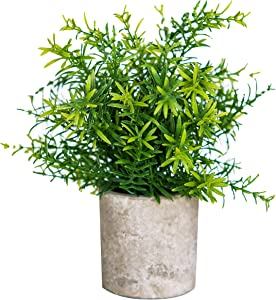 Small Realistic Fake Plants For Home Décor Decoration In Pot | Faux Bamboo Face Plant Decor Potted, Artificial Decorative Plants For Home Office Decor, Dorm Room, Bathroom, Kitchen Table Centerpieces
