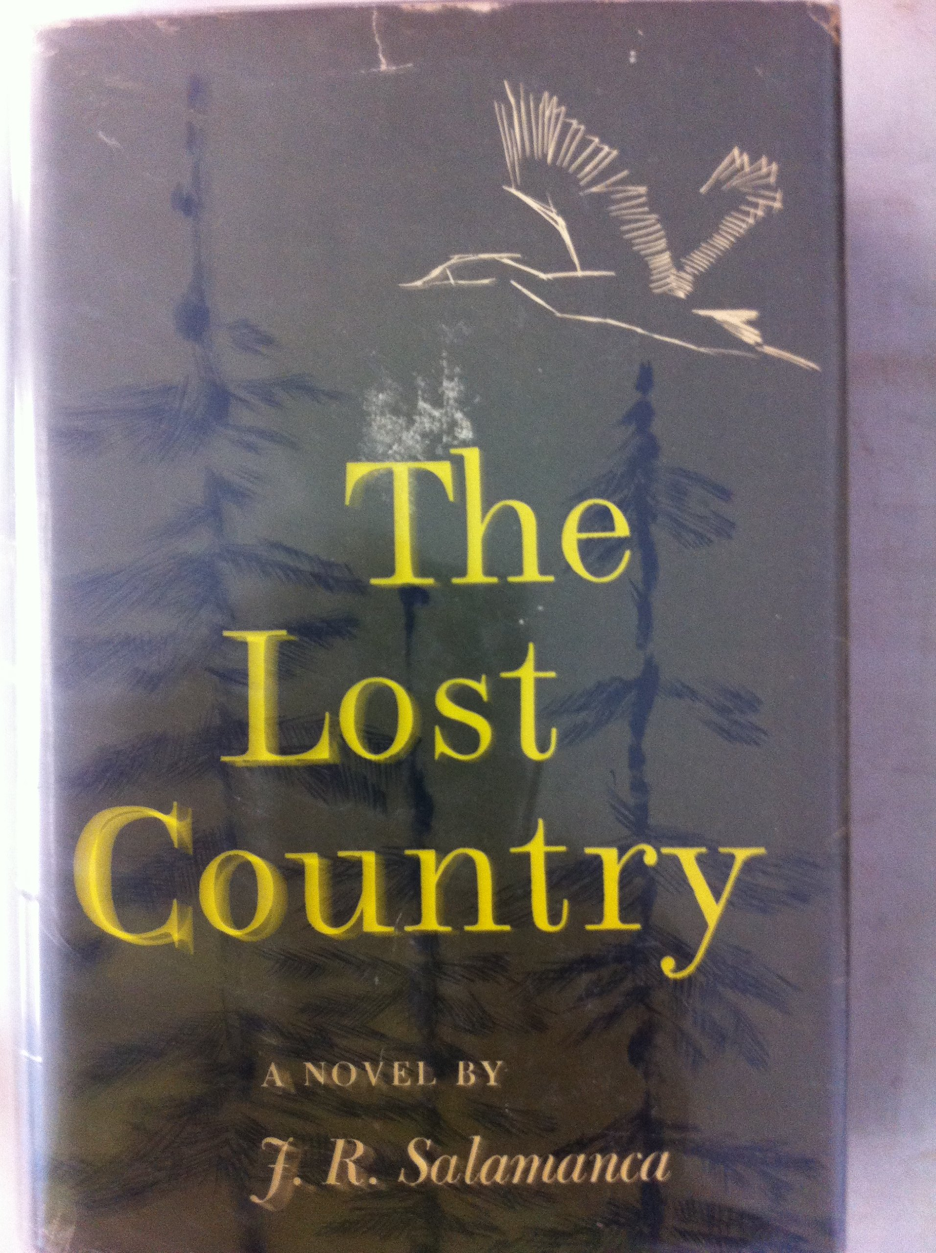 Amazon.com: The lost country;: A novel: J. R Salamanca: Books