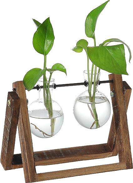 Empty large opening bulb succulent terrariumlightbulb water planting vasedesk decoration home decoration