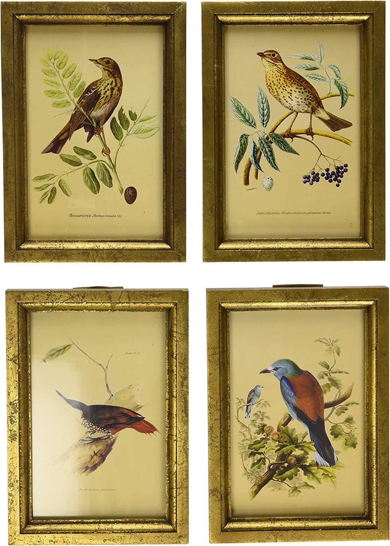 Imax Wooden Bird Plaques Multi Colour Set Of 4 Amazon Co Uk Kitchen Home