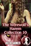 The Werewolf's Harem Collection 10