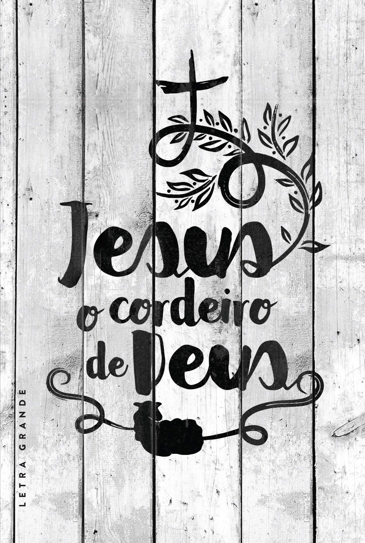 bf9aee2f6 Bíblia NVT - Cordeiro de Deus - Letra Grande - 7898665820155 - Livros na  Amazon Brasil