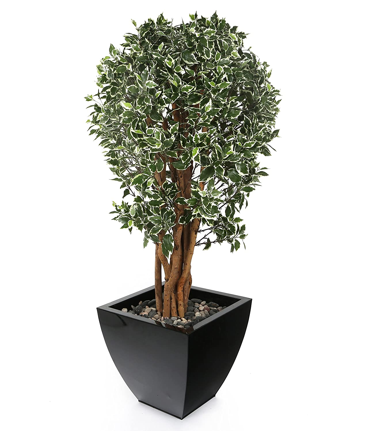 Closer2Nature Artificial 2ft Danielle Weeping Fig Tree in a Decorative Black Pot TM022W
