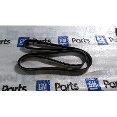 General Motors 88986814, Serpentine Belt: Automotive